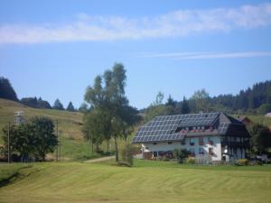 Ferienhof Kammerer, Ferienwohnungen  Ibach - big - 31