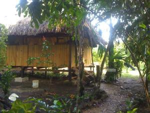 Yaxche Jungle Camp