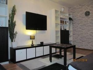 Apartment Olga Forsh