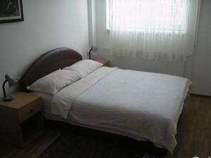 Apartment Miletić