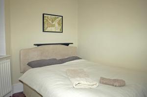 Victorian 2 Bed Flat Vauxhall Park, Apartments  London - big - 7