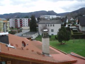Bleichewiesen Apartment, Appartamenti  Bad Harzburg - big - 21