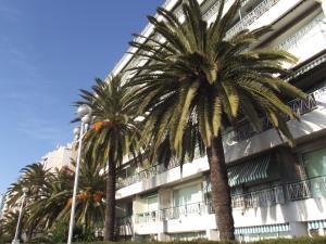 Studio Floride, Apartmanok  Nizza - big - 9