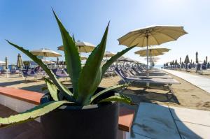 Color Metropolitan Beach Mi.Ma, Hotels  Milano Marittima - big - 10