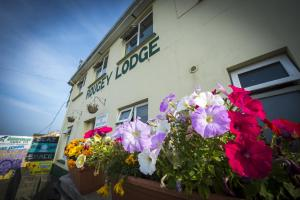 Rougey Lodge Hostel