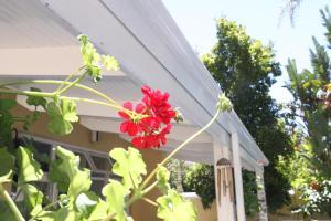 Hunneyball House, Vendégházak  Stellenbosch - big - 60