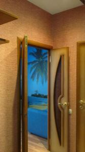 Квартира на Посадской - фото 5