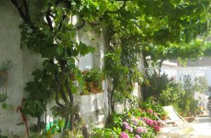Casa Anna Capri Charme, Apartmány  Capri - big - 22