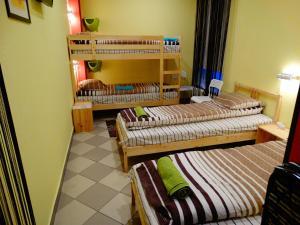 Pioneer Hostel, Ostelli  Ivanteevka - big - 16