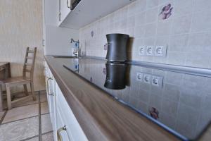Апартаменты Романовские на Красной Поляне - фото 24