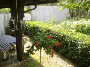 Apartment & Rooms Miboti