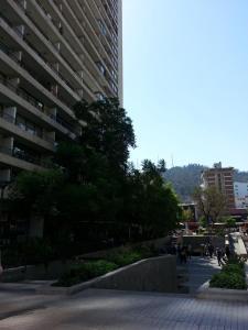 Kuizi departamento Manuel Montt