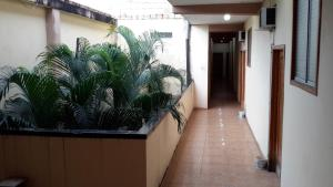Hostal Las Amazonas Inn