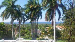 A Piece of Paradise Montego Bay