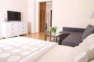 Apartment Moravská, Apartmanok  Karlovy Vary - big - 14