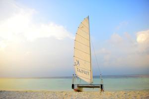 obrázek - Biyadhoo Island Resort