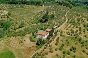 Borgo Basso, Prázdninové domy  Barberino di Val d'Elsa - big - 15