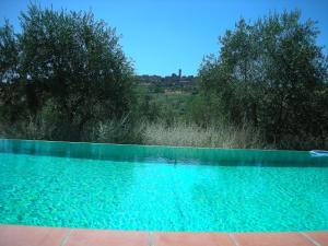 Borgo Basso, Prázdninové domy  Barberino di Val d'Elsa - big - 11