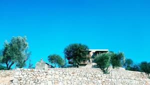 Apollonia Lodge