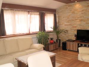 White Coffee Apartment, Apartments  Kopaonik - big - 7