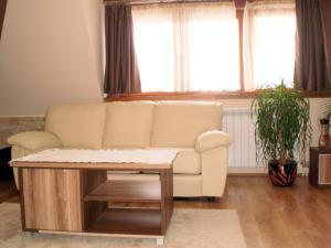 White Coffee Apartment, Апартаменты  Копаоник - big - 14