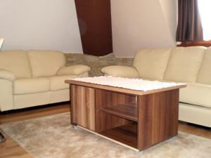 White Coffee Apartment, Апартаменты  Копаоник - big - 20