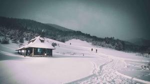 Ethno Bungallows Boškova Voda, Alpesi faházak  Zlatibor - big - 78