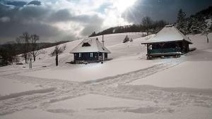 Ethno Bungallows Boškova Voda, Alpesi faházak  Zlatibor - big - 79