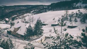 Ethno Bungallows Boškova Voda, Alpesi faházak  Zlatibor - big - 84