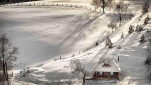 Ethno Bungallows Boškova Voda, Alpesi faházak  Zlatibor - big - 85