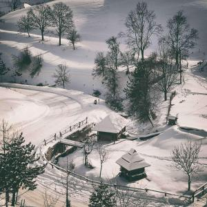 Ethno Bungallows Boškova Voda, Alpesi faházak  Zlatibor - big - 80