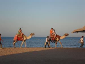 Avrio Red Sea Apartments, Apartmánové hotely  Hurghada - big - 53