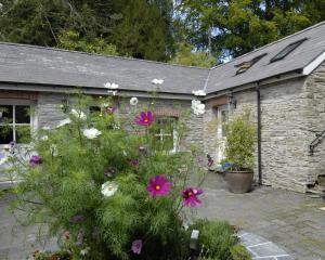 Rhosygilwen Courtyard