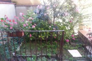 Appartamento Con Giardino, Apartmány  Florencia - big - 2