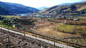 Casa Quinta da Adega do Chão - Vale do Douro