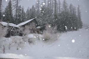 AAA Snowed Inn - Fernie