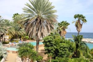 Ocean resort Apartment Warawara