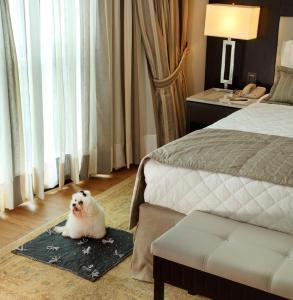 Miramar Hotel by Windsor (20 of 42)