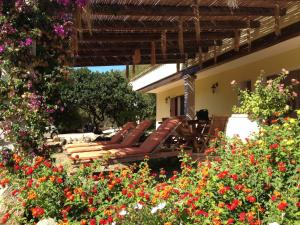 Villa Ginepri, Holiday homes  Arzachena - big - 9