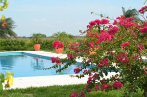 Hotel Campestre San Juan de los Llanos, Vily  Yopal - big - 4