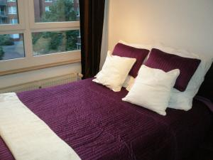 Comfortable Apartment in Prenzlauer Berg, Appartamenti  Berlino - big - 6