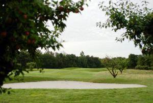 Abbekås Golfrestaurang & Hotell, Hotel  Abbekås - big - 26