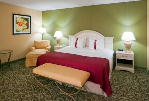 Holiday Inn Chantilly-Dulles Expo Airport, Hotels  Chantilly - big - 4