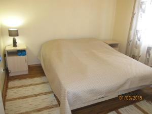 Guest House Kodikas, Penziony  Sortavala - big - 51