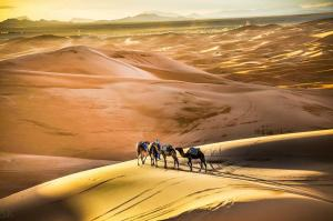 Marhaba Camp, Camel & Sandboarding, Zelt-Lodges  Merzouga - big - 53