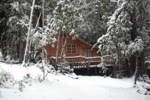 Cabaña Rustica Patagonia Chilena