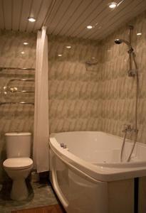 Park Hotel Bitsa, Hotels  Moskau - big - 15