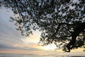 Beachfront Villa Bonita, Vily  Santa Teresa - big - 3