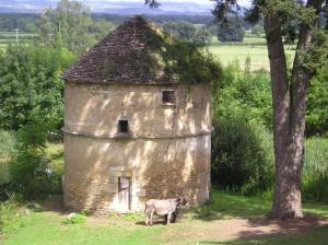 Chateau de Bresse sur Grosne