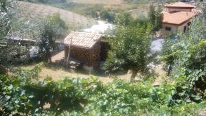 Bed & Breakfast Guglielmone, Bed and breakfasts  Montalto Uffugo - big - 16